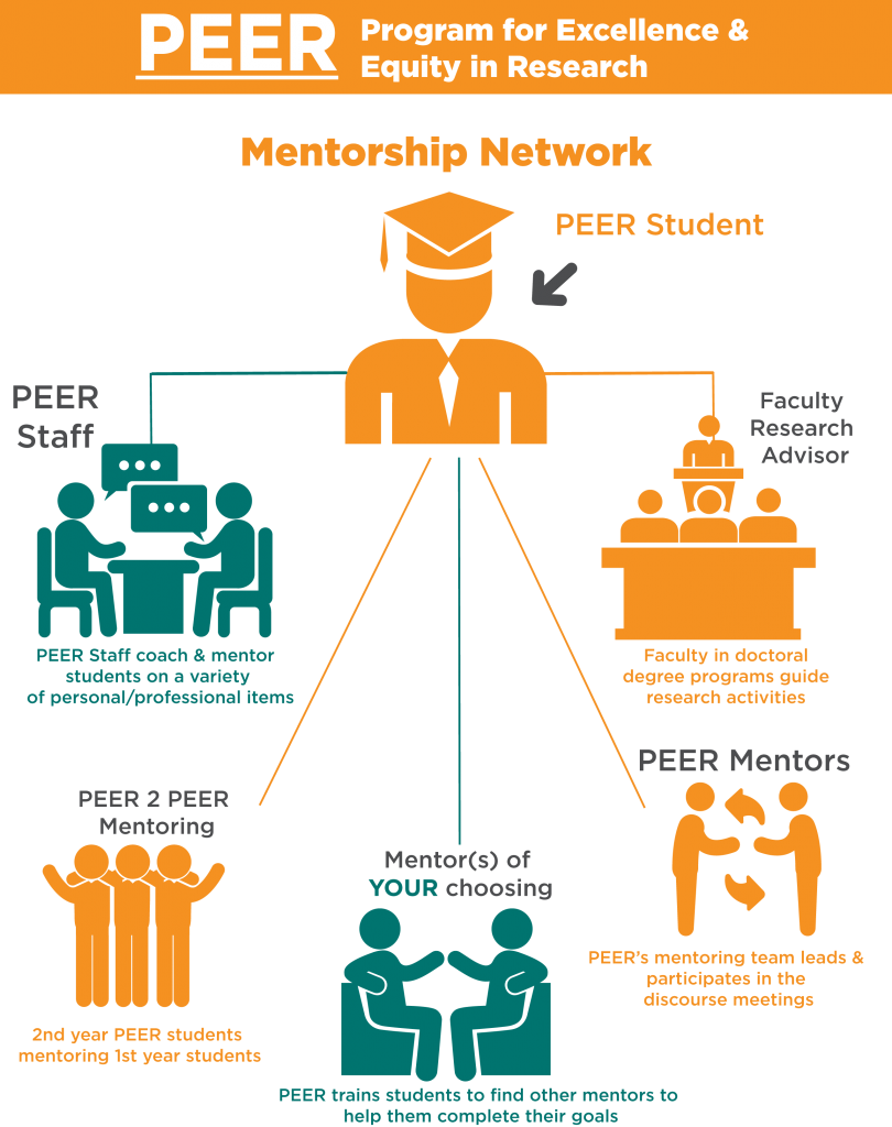 Mentor Network Info graphic