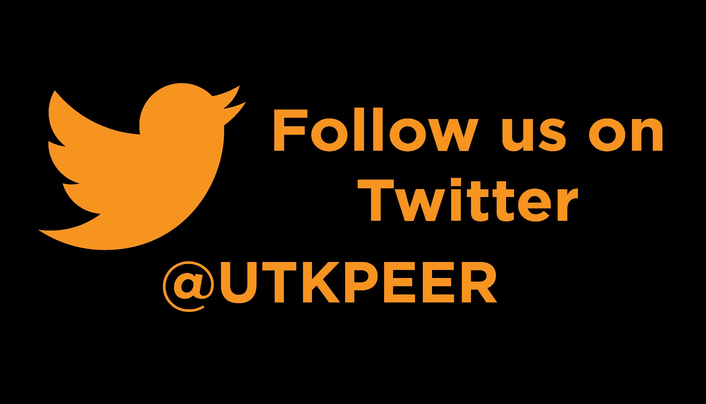 Twitter Button-01